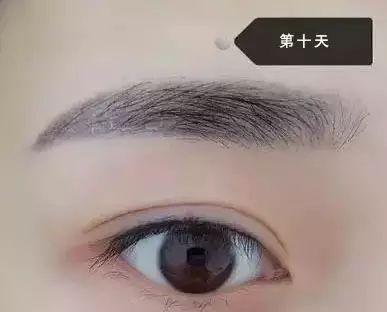 纹眉效果图